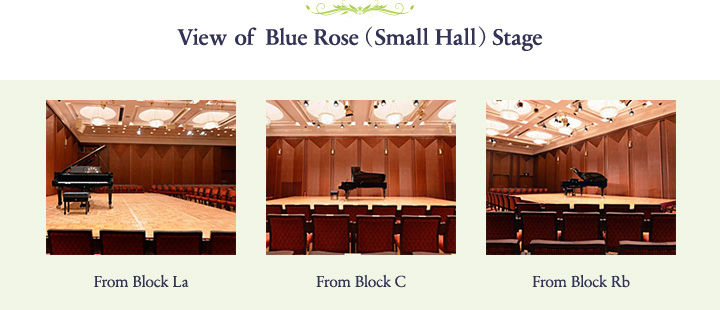 View of Blue Rose( Small Hall )Stage
