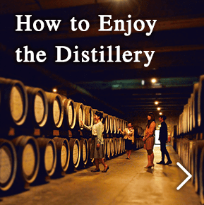 How to enjoy the distillery